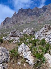 Riserva Naturale Orientata Monte Cofano (Michael Adams in Amsterdam) Tags: landscape sicily