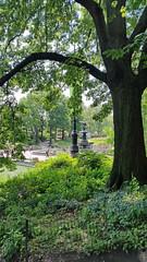 Central Park Secret View (wavy2davy) Tags: newyork unitedstates parks upperwestside