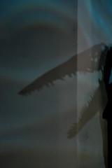 Algo emocional (Gales 08-2013) por Seigar (14) (Seigar) Tags: seigar gales welsh uk travel trip traveller travelling viajar viaje viajero vision vida visions vacation vacaciones viajando vivo different diferente descartes love