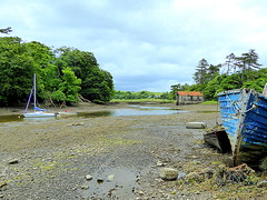 View from Westport Quay (lurcherlad) Tags: ireland sky tree water skyline river boat weed mud cloudy yacht tide overcast estuary mooring mayo lowtide westport boathouse tidal lowwater foreshore