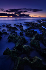 Peeking Above the Clouds (Rodney Campbell) Tags: longexposure sunset plant green moss rocks au australia perth northbeach wa westernaustralia cpl nd06 gnd09