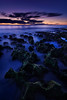 Peeking Above the Clouds (Rodney Campbell) Tags: longexposure sunset plant green moss rocks au australia perth northbeach wa westernaustralia cpl nd06 gnd09