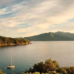 La costa dell'#isoladelba e i suoi panorami  Qui siamo all'#enfola a #portoferraio nello scatto si simo.cala_82. Continuate a taggare le vostre foto con #isoladelbaapp il tag delle vostre #vacanze all'#elba Visita http://ift.tt/1NHxzN3  (isoladelbaapp) Tags: rio marina elba porto di campo azzurro portoferraio marciana isoladelba capoliveri visitelba