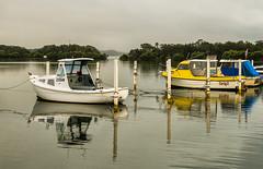 Boats-in-the-rain_DSC5440 (Mel Gray) Tags: swansea water lake lakemacquarie watersport newsouthwales australia newcastle fishingboats