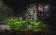 Grne Oase (ellen-ow) Tags: farn gerberei locations pflanzen graffiti lostplace abandoned urbex urban marode verlassen leer alt grn ellenow urbanexploration decayed licht schatten