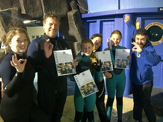 Aquarium Dive - Dive Academy Ireland