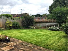 "The turf we laid a few weeks ago has taken really well. We've been mowing it fortnightly since its rooted down, gradually cutting it shorter. Getting there now 😃 #wardenstreecare <a style=""margin-left:10px; font-size:0.8em;"" href=""http://www.flickr.com/photos/137723818@N08/28199204415/"" target=""_blank"">@flickr</a>"