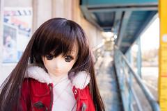 Roller coaster 03 (사나레) Tags: amusementpark dd volks whitealbum dollfiedream 놀이공원 森川由綺 yukimorikawa