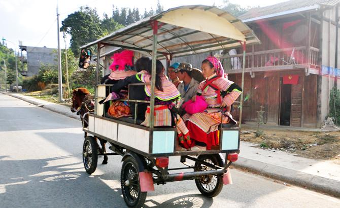 1du lịch bằng xe ngựa tại Bắc Hà