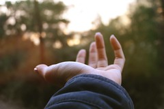 Give me your hand nature! (merveunlu93) Tags: sunset nature soft hand finger hold