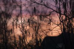 naked at sunset (i.v.a.n.k.a) Tags: light sunset shadows sony fantasy alpha metaphor ivana hesova