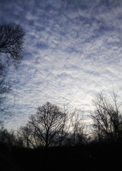 Rapid Weather Shift at Sunrise (3/16/15) (A Million Shards of Light) Tags: blue trees light sky white newyork black nature weather clouds sunrise season spring yorktown westchester
