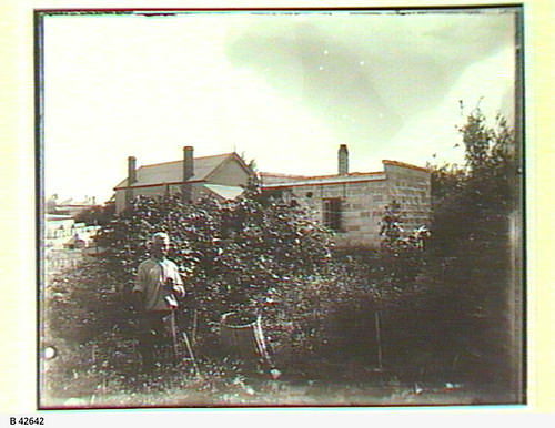 Gardening at Gunn Street, Birkenhead. - Photograph courtesy of the State Library of South Australia