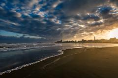 Fresh Start (barthoekstra) Tags: morning sea seagulls beach netherlands sunrise landscape cityscape scheveningen den haag
