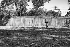 Yoga at the Park Fence (Pauls-Pictures) Tags: park street camera city people urban blackandwhite man men monochrome yoga fence lens photography fuji candid prayer sydney streetphotography australia holy yogi fujifilm excercise practice standard newtown streetphotos practise compactcamera discipline austalia streetpics streetphotograhy achromatic xt1 streetpictures fxlens mirrorlesscamera 35nmf14lens