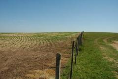 (Valerio Pillar) Tags: soja campos lavrasdosul herbicida peld