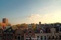 Skyline Rotterdam - Kralingen (Mone-Photography) Tags: city houses roof sky skyline rotterdam rooftops kralingen roffa