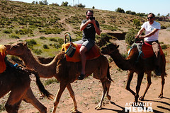 KS4A5281 (Actuality_Media) Tags: morocco maroc camels excursion studyabroad actualitymedia documentaryoutreach filmabroad