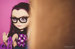 Raven & Dexter (Sabrina Franzoni) Tags: toy toys photography high doll queen after charming dexter raven ever mattel