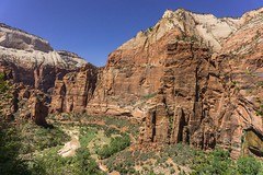 Tall and Majestic (nancystrickland) Tags: hiking zion rei narrows observationpoint reiadventures signaturecamping