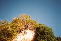 Photo15_13 (Roberta Sparrow) Tags: bali beach indonesia balangan