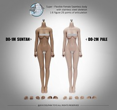 DOLPHIN TOYS DO-1M Stainless  Seamless Female Body - 00 (Lord Dragon ) Tags: hot female toys actionfigure doll seamless onesixthscale 16scale dolphintoys 12inscale
