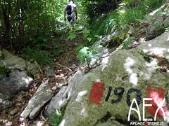 Lizzari-25 (Cicloalpinismo) Tags: parco mountain bike video foto extreme mtb cai monte sentiero alpi aex 190 apuane appennino vinca vetta foce escursione altana ugliancaldo cicloalpinismo cicloescursionismo lizzari