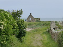 Abandoned (Brian Cairns) Tags: saintandrews cambo fifecoastalpath kingsbarns brianbcairns therockandspindle buddoroack
