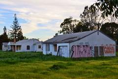Up with Hope, Down with Coke (rickele) Tags: house abandoned home graffiti graf coke boardedup sacramento dnl potsy ase apol southsacramento southsac