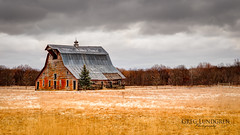 Lonely Barn on the Prairie (Greg Lundgren Photography) Tags: winter snow weather minnesota clouds barn rural midwest farm prairie oldbarn chisagocounty