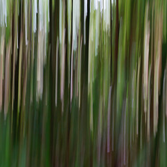 Abstract, A walk through a bamboo forest (blame_the_koala) Tags: abstract green art forest garden woods paint cornwall sony bamboo visual heligan bambooforest a57 lostgardensheligan 18135mm