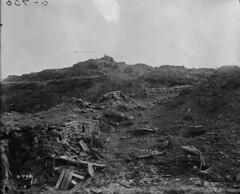 Battle of Ypres—scene near the Ypres salient / Bataille d'Ypres : paysage près du saillant d'Ypres