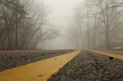 Morning Fog (WayWord Reflections) Tags: indianapolisindiana foggystreet foggyroad treesinfog foggylandscape nightfog roadinfog pentax3570mm pleasantrun pentaxk5 irvingtonindiana roadcloseup foggyindianapolis pleasantrunfoggy irvingtonfog