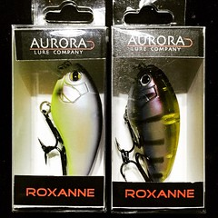 Roxanne! You don't have to put on the red light.....#auroralureco #roxycrankbait