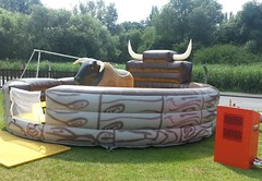 Rodeo Bull 16'. Prices start at £250 per hire.