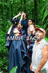 Wildlife observation (Globetrotter Jack) Tags: wild vacation woman holiday plant man green tourism southamerica nature field rain forest trek binocular observation landscape ecuador team amazon rainforest tour natural native hiking birding tourist hike palm adventure binoculars journey jungle land vegetation destination guide lush biology poncho birdwatching tropics explanation indigenous cuyabeno optic amazonia adventurers grouppeople