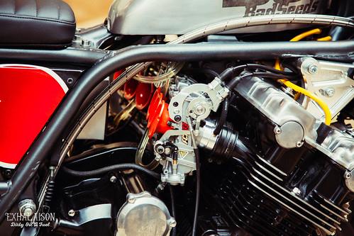 The_Bike_Sheld_2015©exhalaison-77.jpg