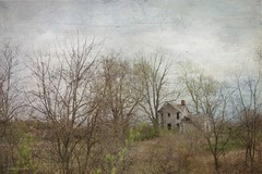 Lost (raewillow) Tags: ohio texture rural frank you thank kerstin