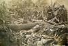 American massacre of the Tausug people of Mindanao, 1906 [800x600] #HistoryPorn #history #retro http://ift.tt/1TF5Vmk (Histolines) Tags: people history 800x600 massacre retro american timeline 1906 mindanao vinatage tausug historyporn histolines httpifttt1tf5vmk