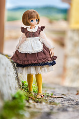 The little peasant (Alix Real) Tags: girl outfit doll dolls little s riding hood match bjd pullip blythe pure peasant koron neemo azone chiika azonedoll azonejp azoneint