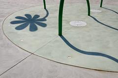 Big Blossom Shadow (JeffStewartPhotos) Tags: park flowers toronto ontario canada playground shadows stclair dry photowalk parkland splashpad torontophotowalk topw viellastreet torontophotowalks gunnsroad topwsc mapleclairepark tarragonaboulevard