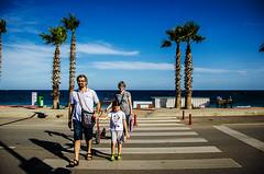 Progress report, line two (Melissa Maples) Tags: road street trees sea summer beach water turkey nikon asia mediterranean trkiye palmtrees antalya nikkor vr afs zebracrossing  pedestriancrossing 18200mm  f3556g  18200mmf3556g d5100 konyaaltbeach
