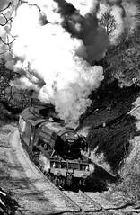 A3 60103 (LNER 4472) Flying Scotsman (mark_fr) Tags: black station flying eric hole beck 5 five yorkshire north railway class a3 moors moor pickering goathland scotsman yorks levisham 460 halt grosmont treacy lner 4472 stanier newtondale 60103 45428