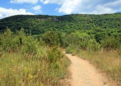 Into the Hills (Appalachian Trail) (dlberek) Tags: nature landscape newjersey swamp wetlands boardwalk appalachiantrail sussexcounty