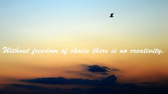 """Without freedom of choice there is no creativity!!"" #RFphotographer #Raffaele_Ferone #Neapolitan #Photographer #photo #nikonphotography #nikonfamily #nikon #nikontop #nikon_photography #passione #amore #photooftheday #ph #imdifferent #like #like4like #lo (raffaeleferone) Tags: nikon sunset rfphotographer nikonphotography nikontop nikonfamily ph photographer photo amore passione like love landscape like4like raffaeleferone imdifferent summer photooftheday neapolitan"