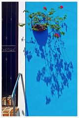 Pared Sanjuanera (San Juan Wall) (SamyColor) Tags: blue color colors azul shadows oldsanjuan puertorico colores sanjuan colori sombras viejosanjuan colorido canon50d tamron28mmf25adaptall2