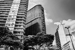 Belo Horizonte 01 (Gall Freitas  Photography) Tags: city cidade brazil white black building tree branco minas gerais preto gal arvore horizonte predio gall belo freitas gallfreitas