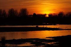 369 (Acanthicus) Tags: sunset sun zonsondergang sony tamron a58 slta58