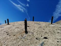 bristly (Jef Poskanzer) Tags: t bunker rebar hawkhill