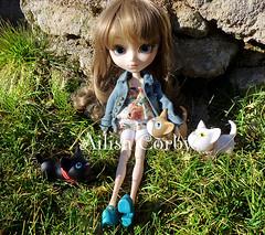 Tomando el solecito (AilishCorby) Tags: cats sun green primavera sol garden jardin gatos io pullip valetine